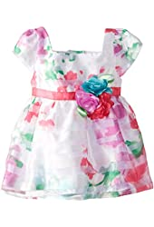 Youngland Baby-Girls' Newborn Floral and Burnout-Stripe Dress