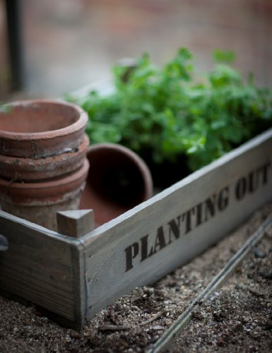 Wooden Planting Out Tray. For the Greenhouse, Potting Shed & Garden. H15 x W54 x D37cm. Code STWO02