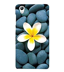 Vizagbeats flower on stones Back Case Cover for Oppo A37