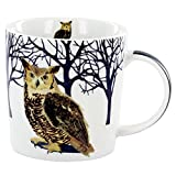 Winter Owl Mug in Gift Box