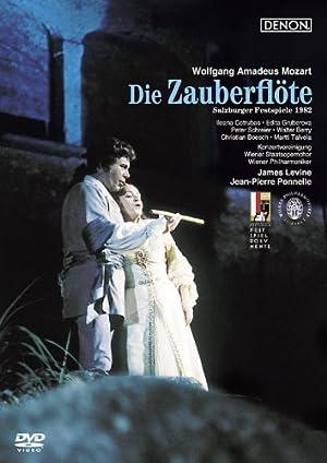 モーツァルト:歌劇《魔笛》全曲 [DVD]