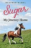 Sugar: My Journey Home