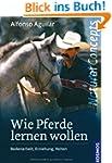 Wie Pferde lernen wollen: Bodenarbeit...