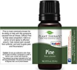 Pine Essential Oil. 10 ml. 100% Pure, Undiluted, Therapeutic Grade.