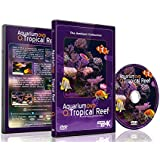 Aquarium DVD - Tropical Reef Aquarium - Filmed In 4K - with Natural Sound and Relaxing Music