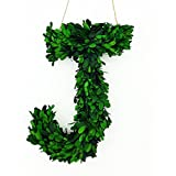 """Modern Home 12"""" Real Preserved Boxwood Monogram Wreath Letters (Letter B)"""
