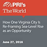 How One Virginia City Is Re-Framing Sea-Level Rise as an Opportunity | Carolyn Beeler