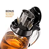 Magic Mill MEK-204S 10 Cup Cordless Silver Electric Kettle With Digital Control Glass Series