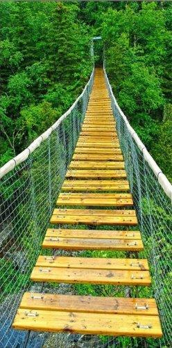 startonight-canvas-wall-art-jungle-bridge-green-usa-design-for-home-decor-dual-view-surprise-artwork
