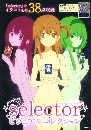 selector ビジュアルコレクション (メガミマガジンスペシャルセレクション)