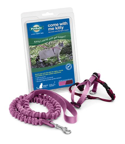 Come With Me Kitty Harness And Bungee Leash, Medium, Dusty Rose