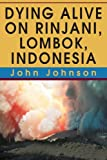Dying Alive on Rinjani, Lombok, Indonesia (0595318878) by Johnson, John