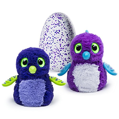 Hatchimals - Hatching Egg - Interactive Creature - Draggle - Blue/Purple Egg by Spin Master