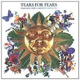 echange, troc Tears For Fears - Tears Roll Down (Greatest Hits 82-92)