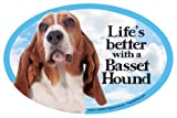 Basset Hound Oval Dog Magnet for Cars
