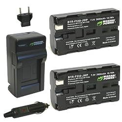 Wasabi Power Battery (2-Pack) and Charger for Sony NP-F330, NP-F530, NP-F550, NP-F570 and Sony CCD-RV100, CCD-RV200, CCD-SC5, CCD-SC6, CCD-SC55, CCD-SC65, CCD-TRV66, CCD-TRV67, DCM-M1, DCR-SC100, DCR-TR7, DSC-CD250, DSC-CD400, DSC-D700, DSC-D770, D-V500,