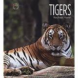 Tigers (Living Wild) ~ Rachael Hanel