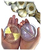 Islandoffer Garlic Twist Crusher, Mincer, Peeler Tool, Clear