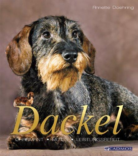 Dackel: Kleiner Hund mit großem Herz, Buch