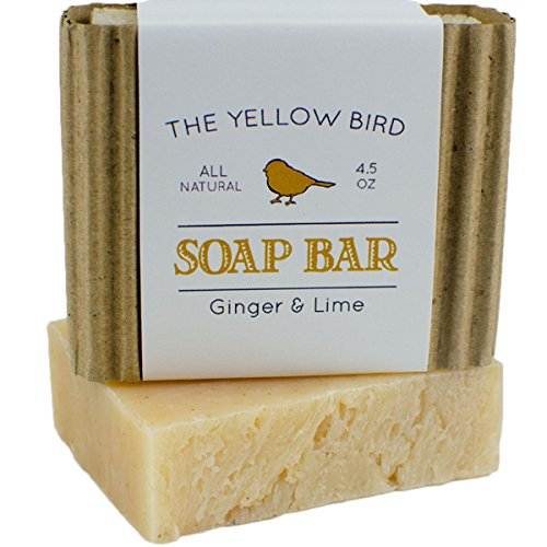 Ginger Lime Bar Soap with Aloe Vera. Antioxidant Sun Repair. Organic & Natural Body Wash. Gentle Face Cleanser for Acne, Eczema, & Blemishes. (Extra Virgin Aloe Vera Gel compare prices)