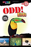 img - for Odd! Birds: Level 1 book / textbook / text book