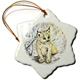 3dRose Orn_54914_1 The Wild Cat Lynx In The Woods, Sweet And Cute Snowflake Porcelain Ornament, 3-Inch