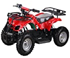 Sonora 500 Watt 36 Volt Electric Powered ATV W/reverse