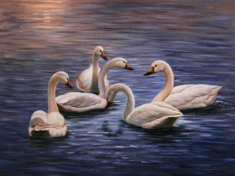 Oil Painting 'White Swans In The Blue Lake', 18 x 24 inch / 46 x 61 cm , on High Definition HD canvas prints is for Gifts And Bar, Game Room And Study Room Decoration, panoramic
