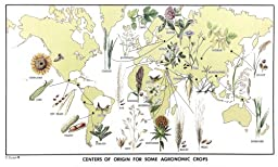 World Map of Agronomic Crops, with Botanical Illustrations, 12 X 20 Inches