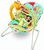 Fisher-Price Luv U Zoo Bouncer
