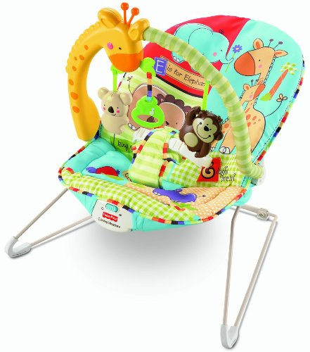 Discount Fisher Price Luv U Zoo Bouncer Cheap Artie Reviews