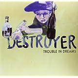 Trouble in Dreams [Vinyl]
