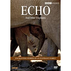 Echo and her elephant family stampede onto DVD in this spectacular two-disc set! Echo is extremely wise an experienced mother and commanding matriarch of her family. Shes also an African elephant and arguably one of the most famous elephants in the world
