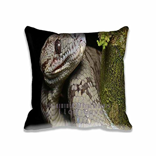 Decorative Amazon Tree Boa Pillow Cases Standard Size, Personalized Animals/Reptiles & Frogs Couch Cushion Covers Square Cotton Zippered pillowcase 16x16 inches Print Two Sides (Amazon Tree Boa compare prices)