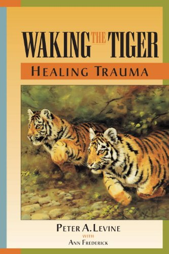 Waking the Tiger: Healing Trauma (Trauma And Development compare prices)