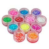 LE 12 Color Acrylic Uv Gel Nail Art Glitter Dust Powder