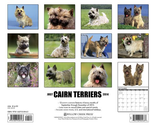 Just Cairn Terriers