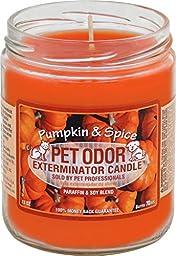 Pet Odor Exterminator Jar Candle - Pumpkin & Spice
