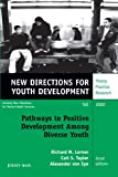 img - for Pathways to Positive Development Among Diverse Youth: New Directions for Youth Development, No. 95 book / textbook / text book
