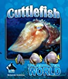 Cuttlefish (Underwater World)