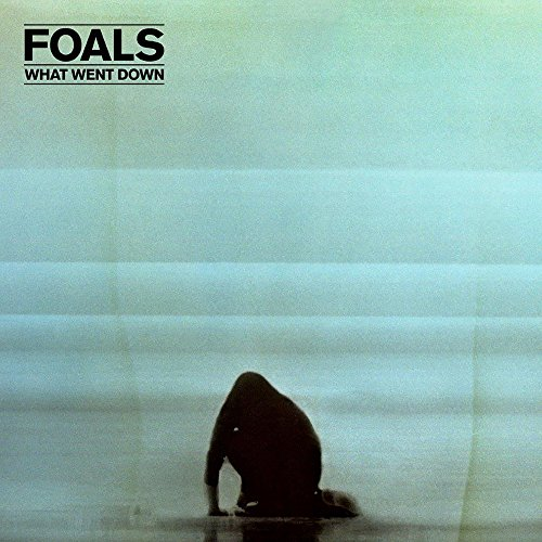 Foals - What Went Down - Zortam Music