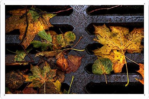 metallo-poster-targa-in-metallo-piastra-leaves-yellow-autumn-dampness-lattice-iron-dirt-7124-retro-v