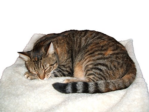self-heating-pet-blanket-pad-ideal-for-cat-dog-bed-medium