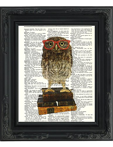 "Dictionary Art Print - Owl Smarty Pants Nerdy Young Owl with Red Glasses Illustration - Printed on Recycled Vintage Dictionary Paper - 8.5""x11"" - Mixed Media Poster on Vintage Dictionary Page"