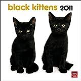 Black Kittens 2011 Calendar