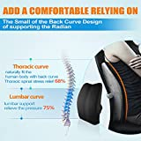 Memory Foam 3D Ventilative Mesh Lumbar Support Back Cushion Pillow to Properly Align the Spine and Ease Lower Back Pain with Insert and Strap for Home,Office Chair and Car Black