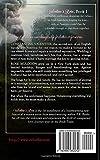 Valentines Rose: Book 1, The Bride Train Series (Volume 1)