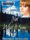 Not What It Seems (Escape to Alaska Trilogy Book 1)