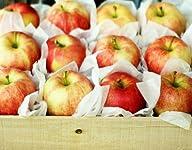 6 lbs Honeycrisp Apples Gift Box