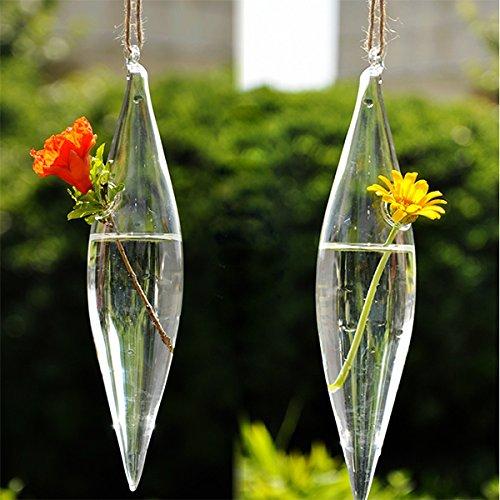 Soled design fantastico portafiori pianta in vetro vaso - Azalea pianta da interno o esterno ...